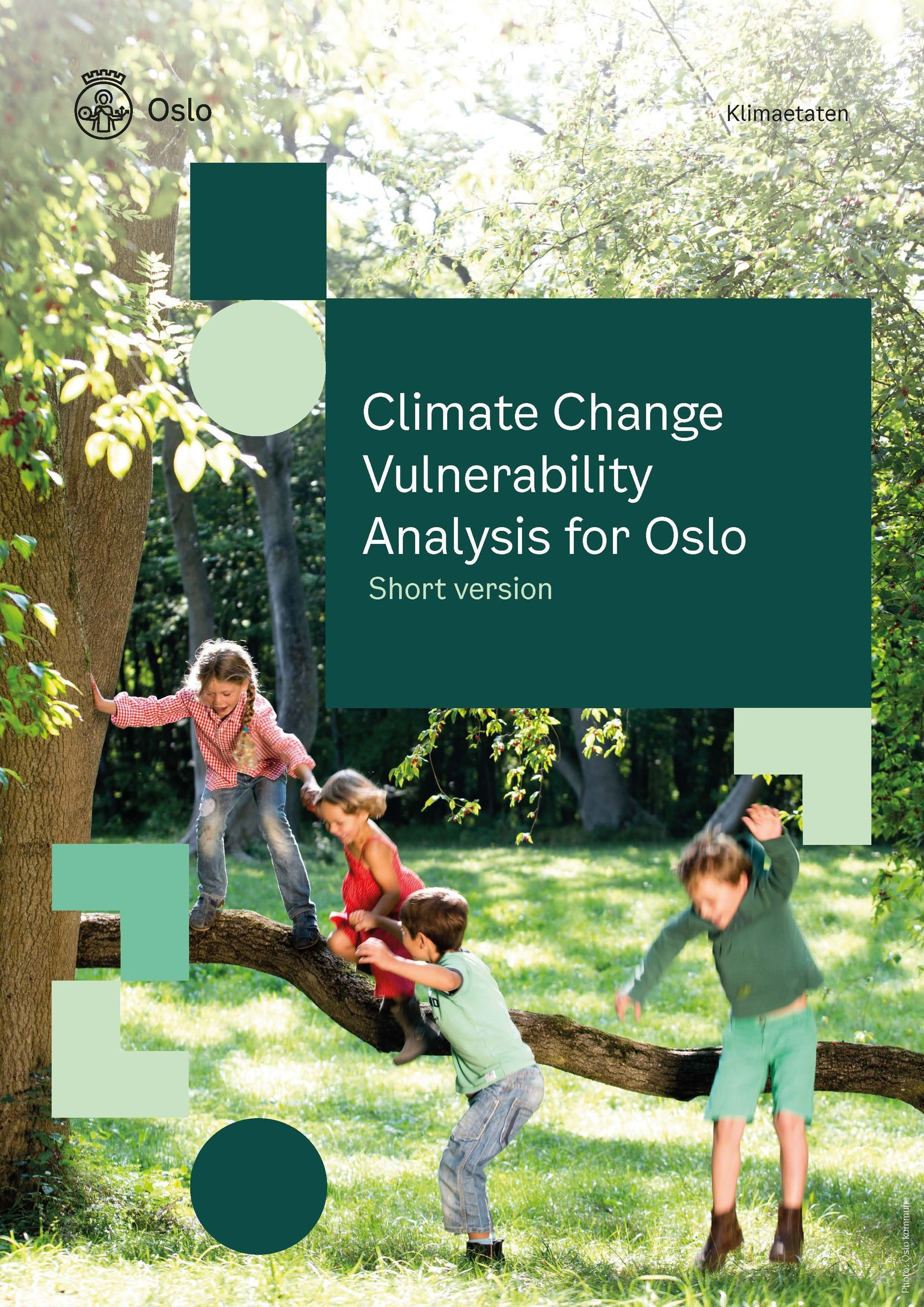 Climate Change Vulnerability Analysis for Oslo